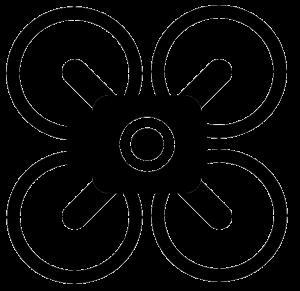 Drone it Services logo